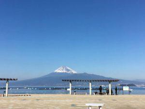 西伊豆 平沢 ダイビング 富士山 キレイ 茨城 クレセント