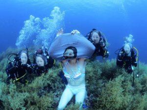 記念ダイブ 日本海ダイビング 佐渡島ダイビング フリーウェイ 日本の夏 茨城ダイビング クレセント