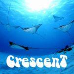 常夏の島 サイパン ダイビング 透明度 マリアナ ガラパン 茨城 クレセント