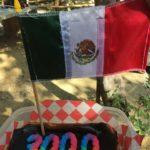 メキシコ セノーテ セノーテダイビング プラヤデルカルメン エルピット エデン ドスオホス カーウォッシュ シルクドソレイユ JOYA イグアナダイバーズ 茨城ダイビング いわきダイビング クレセント