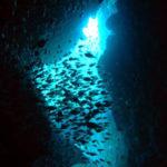 水中洞窟ダイブ ウエイクボード