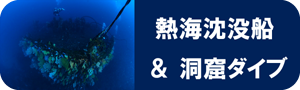 熱海 アドベンチャー 洞窟ダイブ 沈船ダイブ