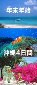 年末年始沖縄 年末年始ダイビング 沖縄ケラマダイブ 茨城ダイビング クレセント