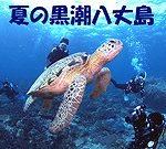 黒潮の海 八丈島ダイビング ウミガメ ドリフトダイブ 茨城 クレセント