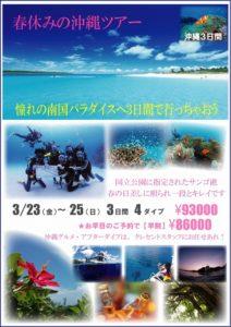 沖縄 ケラマ ダイビング 海がキレイ 那覇 茨城 クレセント