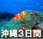 沖縄ダイビング ケラマダイビング 沖縄ダイブ 茨城 クレセント